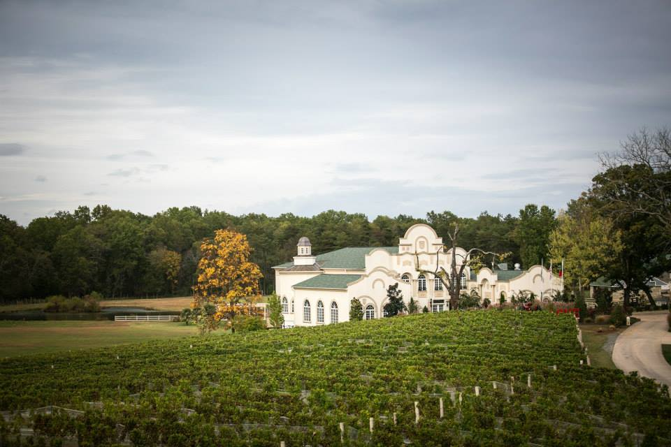 Bluestone vineyard wedding