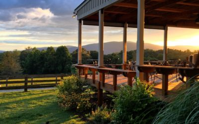 Hidden Gems in VA Wine Country: More Must-taste spots for 2020
